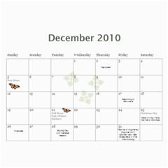 2010 Calendar By Ora Moon   Wall Calendar 11  X 8 5  (12 Months)   Lkmjfiv4js68   Www Artscow Com Dec 2010