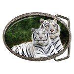 White Phase, Bengal Tigers Belt Buckle