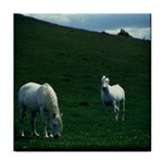 Two White Horses 0002 Tile Coaster
