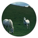 Two White Horses 0002 Magnet 5  (Round)