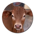 Brown Cow  0003 Round Mousepad