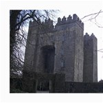 bunratty castle 8x10 - Collage 8  x 10
