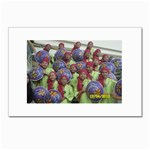 SDC10170 Postcard 4 x 6  (Pkg of 10)