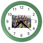 SDC10170 Color Wall Clock