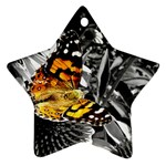 362954323_94fafe3a92 Star Ornament (Two Sides)