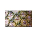 pineapple Sticker Rectangular (100 pack)