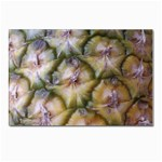 pineapple Postcard 4 x 6  (Pkg of 10)