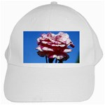 flower-bv5wa White Cap