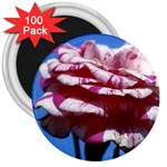 flower-bv5wa 3  Magnet (100 pack)