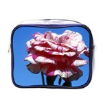 flower-bv5wa Mini Toiletries Bag (One Side)