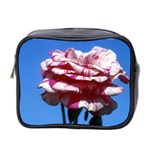 flower-bv5wa Mini Toiletries Bag (Two Sides)