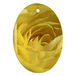 flower-07 Ornament (Oval)