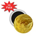flower-07 1.75  Magnet (10 pack)