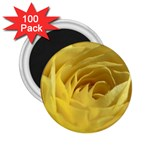 flower-07 2.25  Magnet (100 pack)