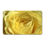 flower-07 Magnet (Rectangular)