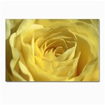 flower-07 Postcard 4 x 6  (Pkg of 10)