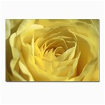 flower-07 Postcards 5  x 7  (Pkg of 10)
