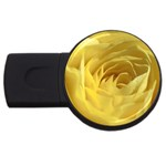 flower-07 USB Flash Drive Round (1 GB)