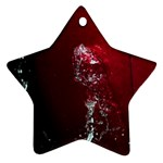 watermark2 Star Ornament (Two Sides)