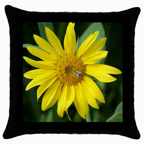 Sale By M Abel   Throw Pillow Case (black)   Kbzte5o1ooer   Www Artscow Com Front