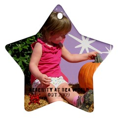 Serenity By Kristin Dutt   Star Ornament (two Sides)   5rd62xewdlm8   Www Artscow Com Front