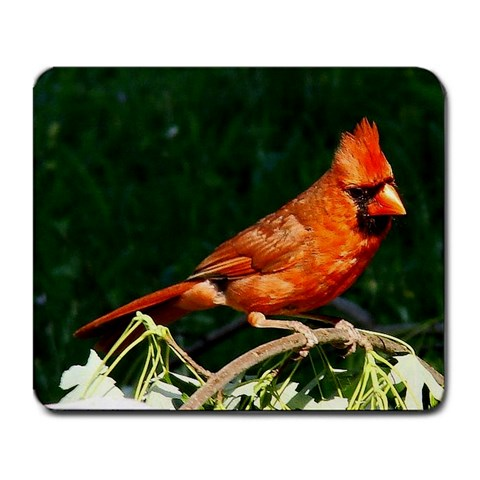 Cardinal On A Limb By Angela Coffey   Large Mousepad   222wk4qxsff1   Www Artscow Com Front