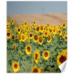 Sunflowers - Canvas 8  x 10