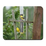 Finch Mousepad - Large Mousepad
