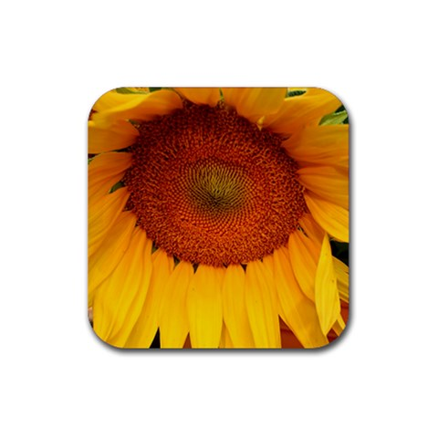 Coaster By Jenny Brown   Rubber Coaster (square)   684akaifof9a   Www Artscow Com Front