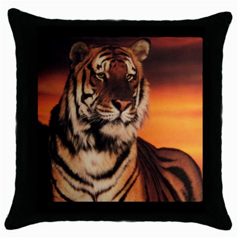 By Kim   Throw Pillow Case (black)   9ll9fub3j5i0   Www Artscow Com Front
