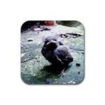 little birdie - Rubber Coaster (Square)