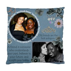 Best Friend  By Danny   Standard Cushion Case (two Sides)   Wf2w6zzhx2oo   Www Artscow Com Back