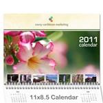 Personal Calendar - Wall Calendar 11  x 8.5  (18 Months)
