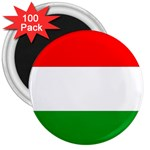 big_Hungarian_flag 3  Magnet (100 pack)