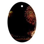fireworks-color Ornament (Oval)