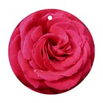 Rose-slideshow-112x131 Ornament (Round)