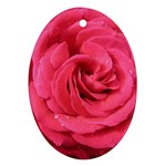 Rose-slideshow-112x131 Ornament (Oval)