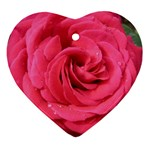 Rose-slideshow-112x131 Ornament (Heart)