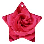 Rose-slideshow-112x131 Ornament (Star)