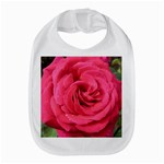 Rose-slideshow-112x131 Bib