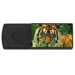 Tiger Usb Flash Drive Rectangular (4 Gb)