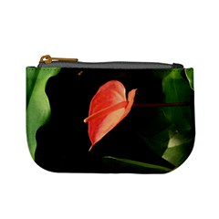 Eden Mini Purse By Catvinnat   Mini Coin Purse   5lrctia7xpdw   Www Artscow Com Front