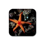 DOT_Maldives_Diving_5 Rubber Square Coaster (4 pack)