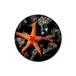 DOT_Maldives_Diving_5 Rubber Round Coaster (4 pack)