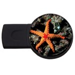 DOT_Maldives_Diving_5 USB Flash Drive Round (2 GB)