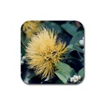 Yellow Lehua Coaster - Rubber Coaster (Square)