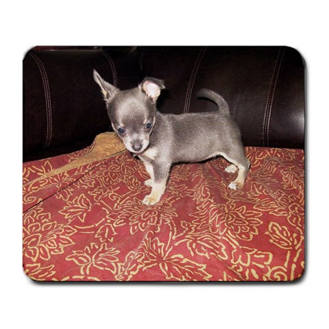 Chloe 11 Weeks By Patricia Aaron   Large Mousepad   R6mqo3wcnoub   Www Artscow Com Front