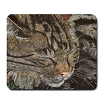 Beautiful Dreamer mousepad - Large Mousepad