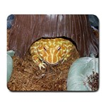 Packy - Large Mousepad