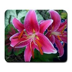 Stargazer - Large Mousepad
